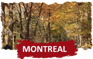 Francês e Inglês Montreal